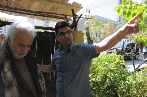 نقش نگار ناصر ملک مطیعی